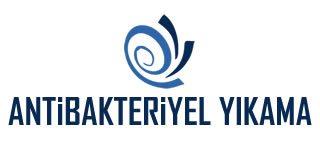 Ankara Battaniye Yıkama